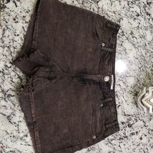 Free People Brown Corduroy Shorts
